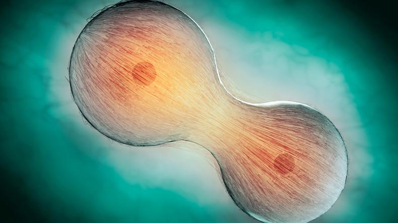 qeliza